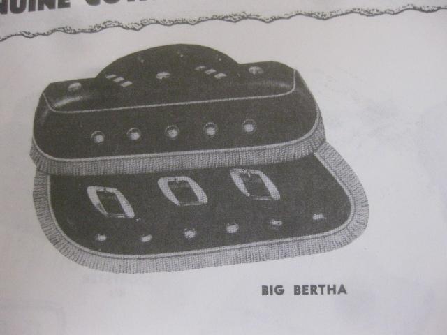 純正リアクラシュガード(BIG BERTHA BAG用)